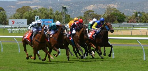 Horse Racing Tips for Beginners